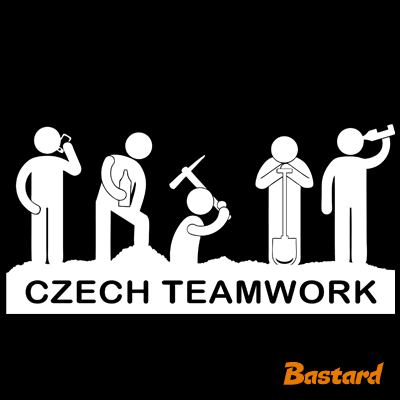 Czech Teamwork