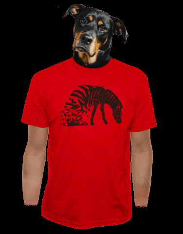 Zebrovaná láska pánské tričko