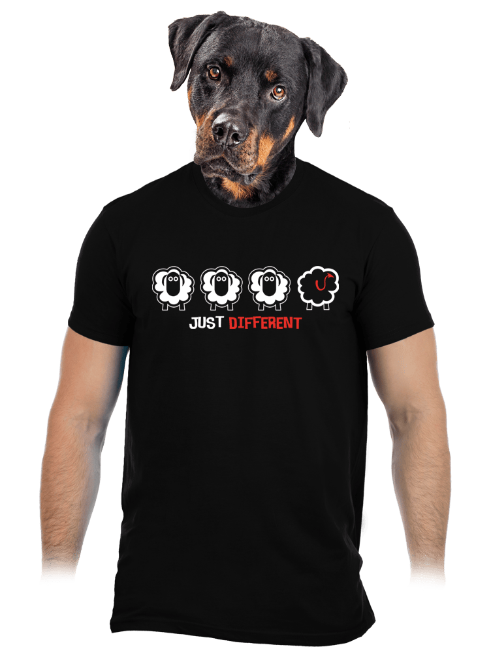 Černá ovce pánské tričko
