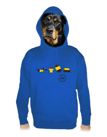 Testováno modrá pánská mikina