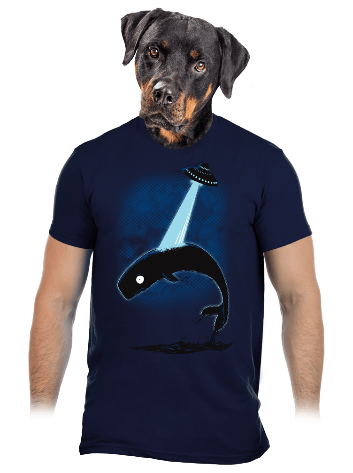 Big Fish pánské tričko