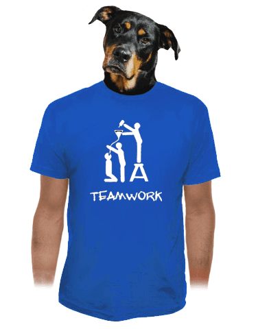 TeamWork modré pánské tričko