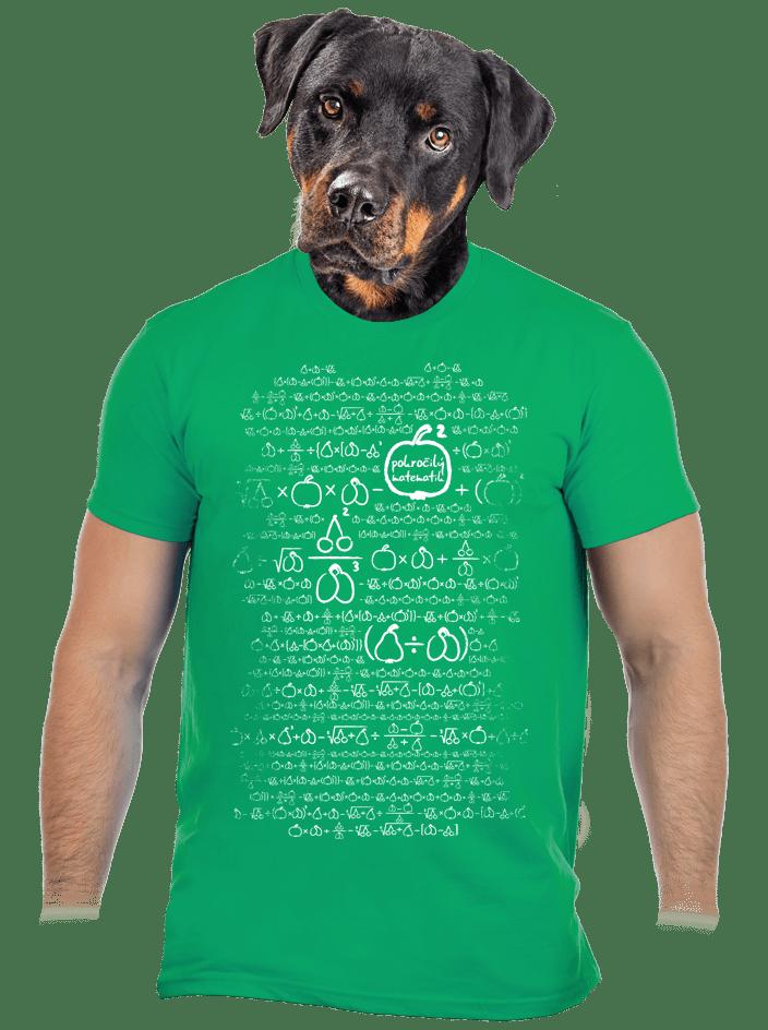 Matematik zelené pánské tričko