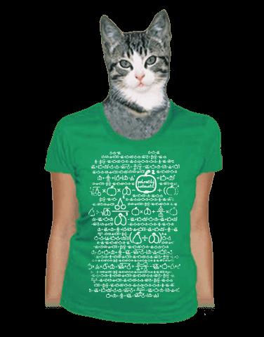 Matematik zelené dámské tričko