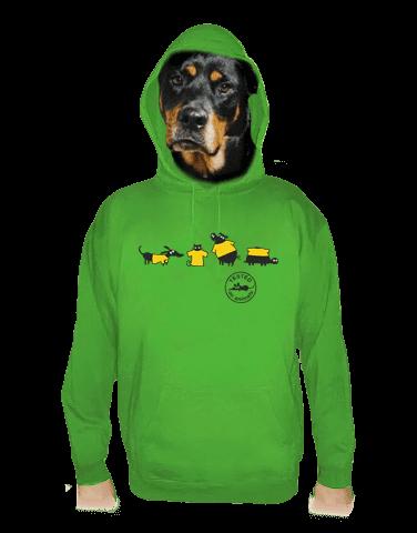 Testováno zelená pánská mikina