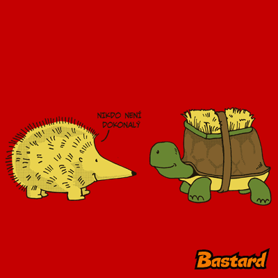 Želva s ježkem
