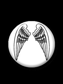 Placka Křídla