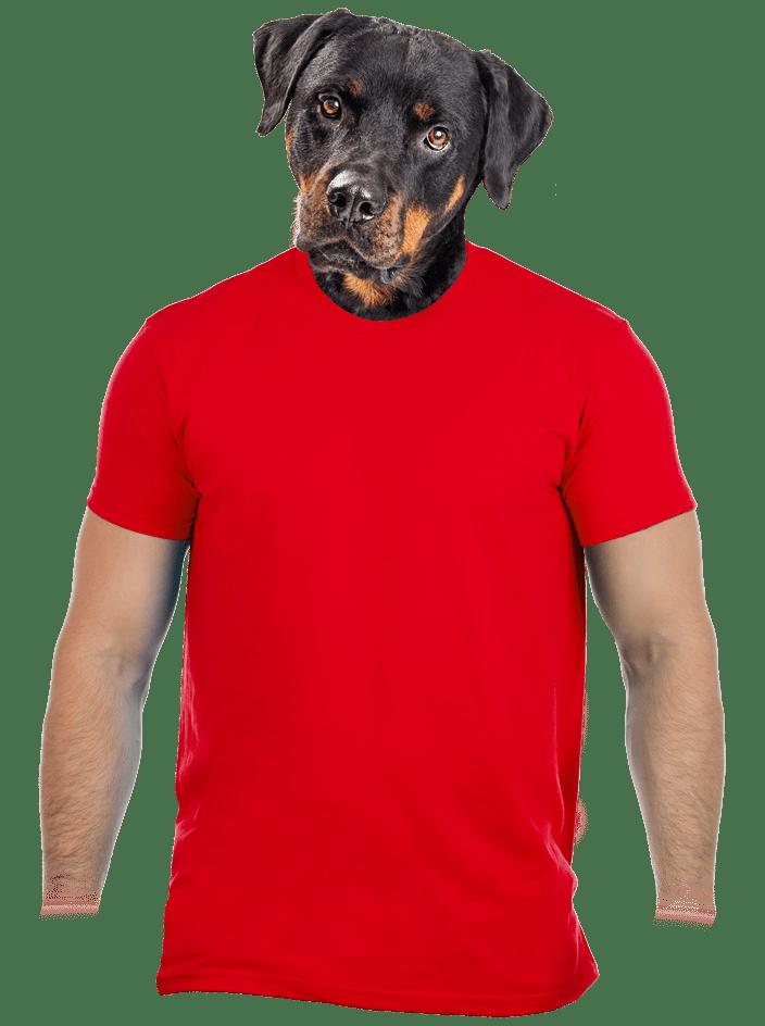 Pánské tričko červené – nový střih