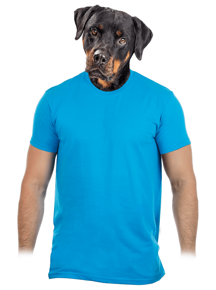 Pánské tričko tyrkysové