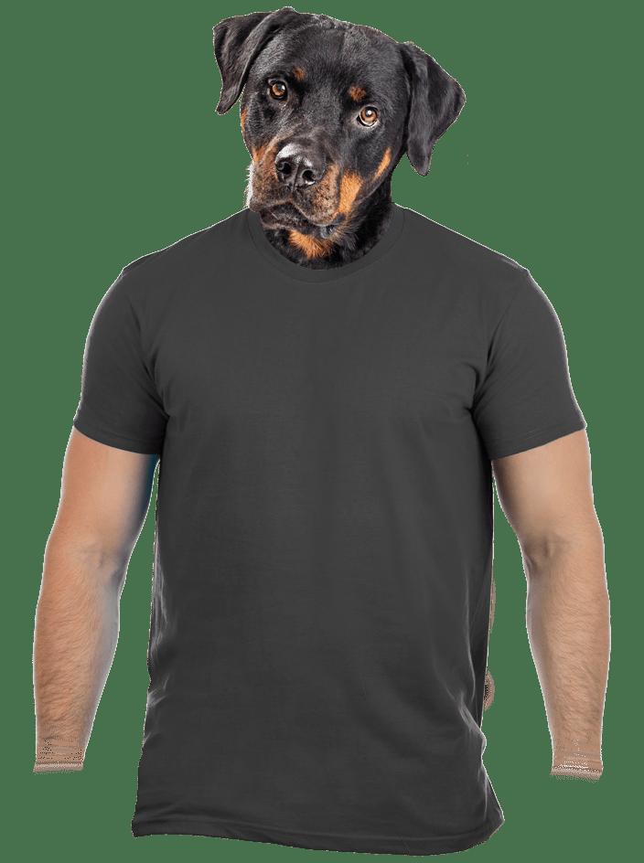 Pánské tričko šedé – nový střih