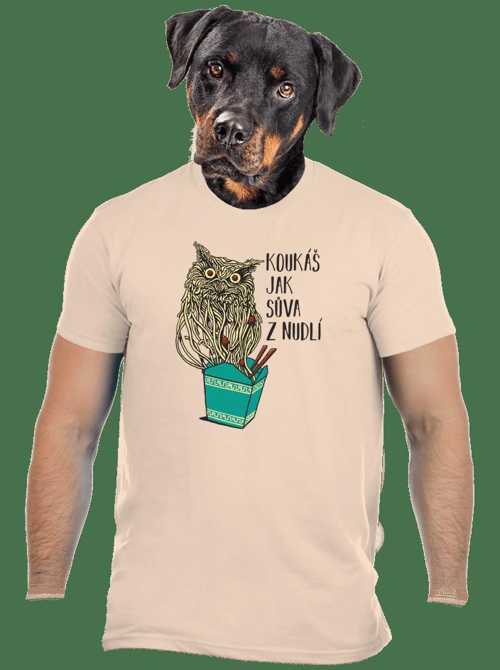 Sůva z nudlí hnědé pánské tričko