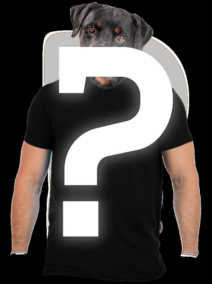 Náhodné pánské tričko