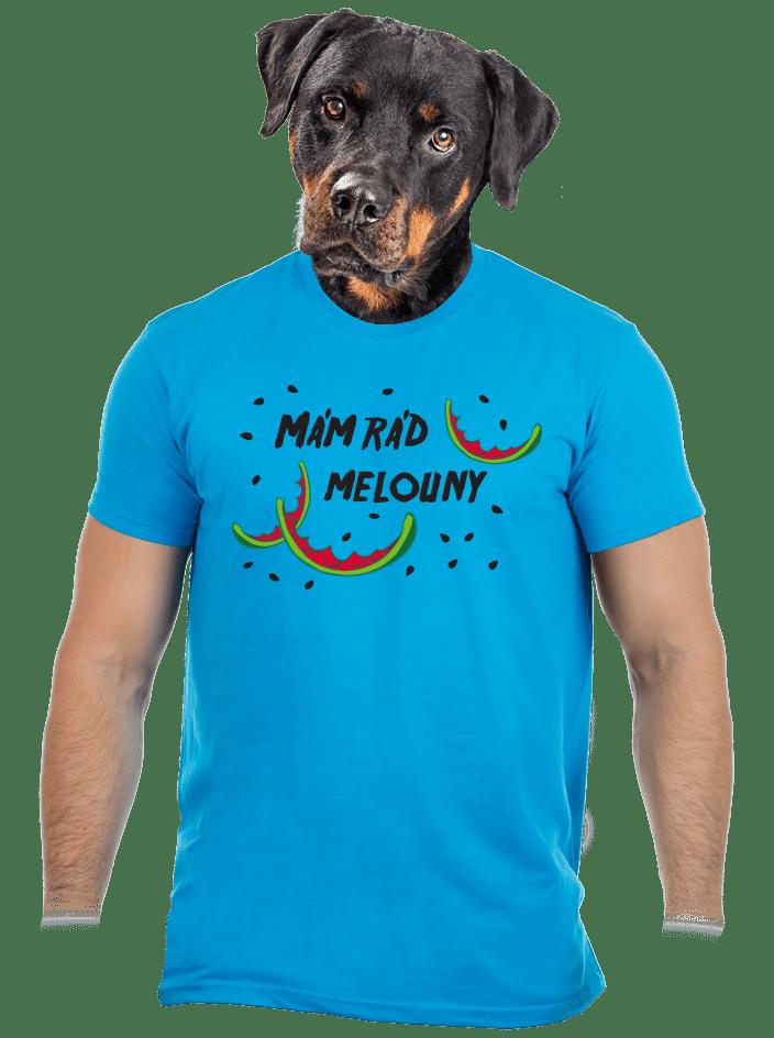 Melouny modré pánské tričko