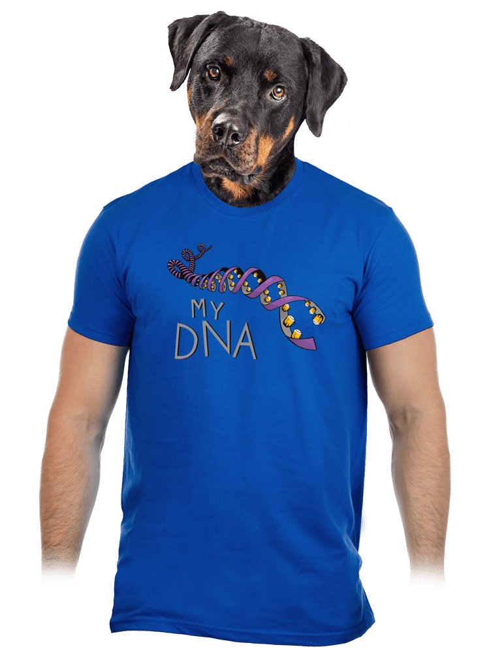My DNA modré pánské tričko