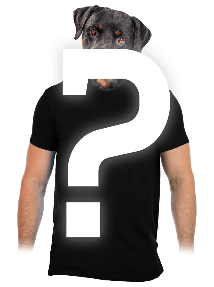 Náhodné pánské tričko s digi-tiskem
