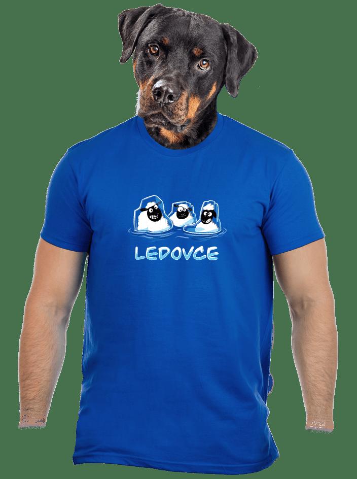 Ledovce pánské tričko